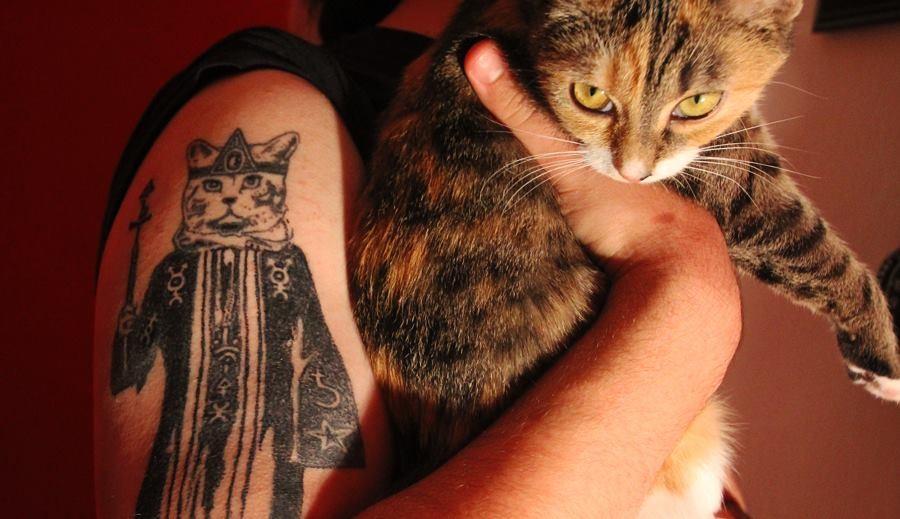 Podporujeme kočičí útulky